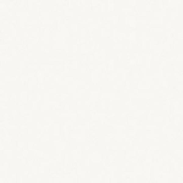 Egger W 980 SM Білий платиновий (Платиновий білий) Image