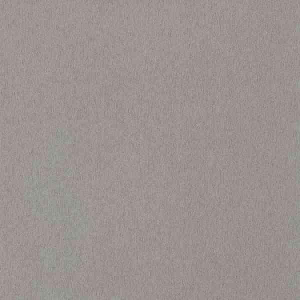 Egger F 501 ST2 Алюміній матований (Титан) Image