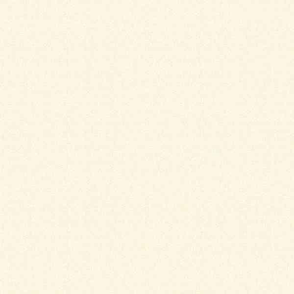 Egger E0 (F ****) U 104 ST15 Алебастр (Алебастр) білий Image